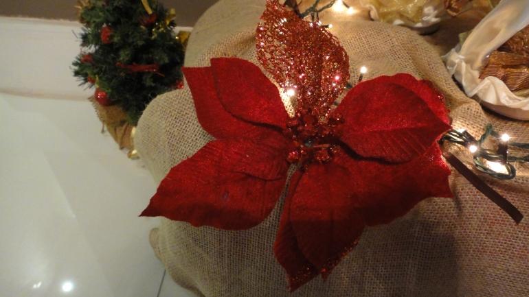 Flor de Natal deu um toque especial